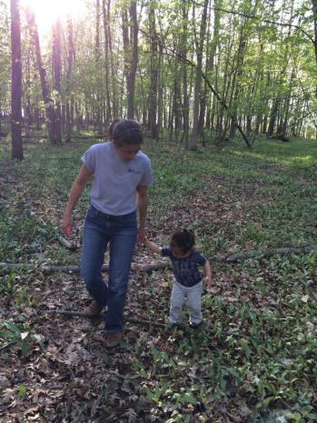 Rho in woods1